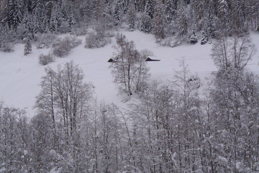 Magie de la neige dsc_3723-2